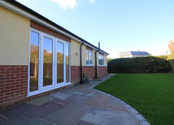 Thumbnail 3 bed detached bungalow to rent in Snowdrop Street, Wymondham, Norwich
