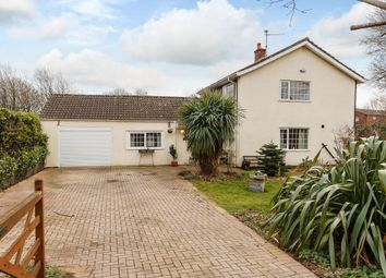 Thumbnail 3 bed detached house for sale in The Paddocks, Newport