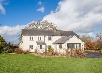 Thumbnail 4 bed detached house for sale in Black Dog, Crediton