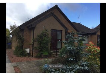Thumbnail 2 bedroom bungalow to rent in Abbot Road, Stirling