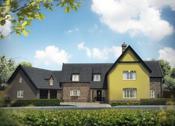 Thumbnail 4 bed detached house for sale in Cley Lane, Saham Toney, Thetford