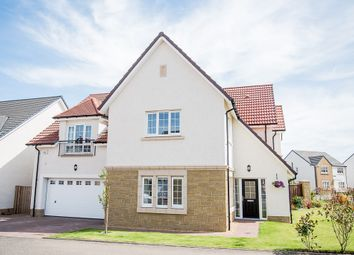 Thumbnail 5 bed detached house for sale in Cranesbill Place, Larbert