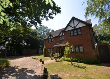 Thumbnail 4 bed property for sale in Lessingham, Norwich