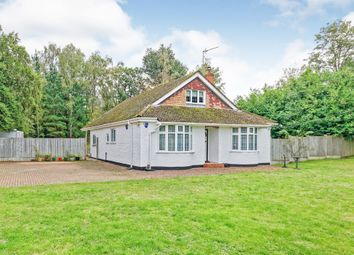 Thumbnail 4 bed detached bungalow for sale in Newnham Valley, Newnham, Sittingbourne