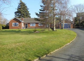 Thumbnail 3 bed detached bungalow for sale in Nant Y Coed, Hillcrest, Newtown, Powys