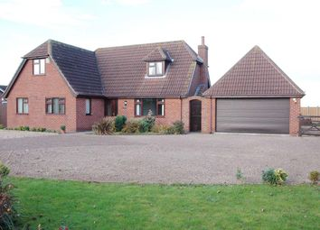 Thumbnail 4 bed detached house to rent in Main Road, Withern, Alford