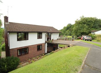 Thumbnail 4 bed detached house for sale in Grove Park Drive, Newport