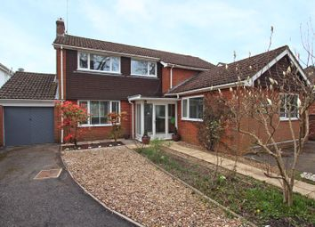 Thumbnail 5 bed detached house for sale in Lyndhurst Road, Ashurst, Southampton