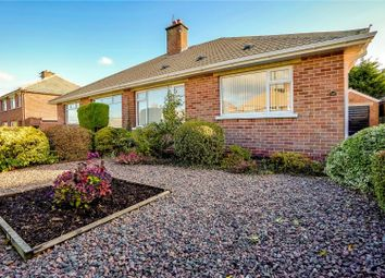 Thumbnail 2 bed bungalow for sale in Wanstead Road, Dundonald