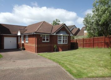 Thumbnail 3 bed detached bungalow for sale in 9 Pine Avenue, Cambuslang, Glasgow
