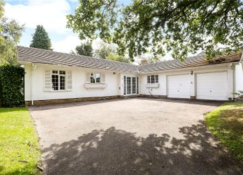 Thumbnail 4 bed detached bungalow for sale in Chiltley Way, Liphook, Hampshire