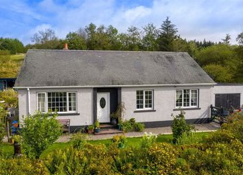 Thumbnail 3 bed detached house for sale in Newcastleton