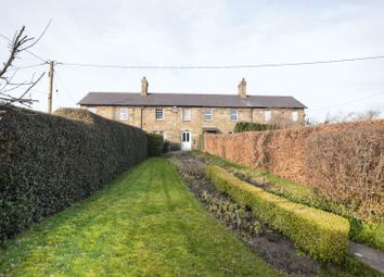 Thumbnail 2 bed terraced house for sale in The Village, Fenwick, Berwick-Upon-Tweed