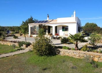 Thumbnail 3 bed country house for sale in Portugal, Algarve, Tavira
