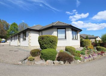 4 bed detached bungalow for sale in 8 Wallace Court, St Andrews Road, Dingwall IV15