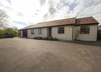Thumbnail 4 bedroom detached bungalow for sale in Brooklyn, Sand Road, Wedmore, Somerset