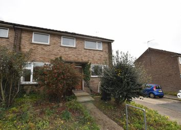 Thumbnail 5 bed semi-detached house to rent in Ashdown Way, Colchester