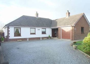 Thumbnail 3 bed detached bungalow for sale in Llechryd, Cardigan, Ceredigion