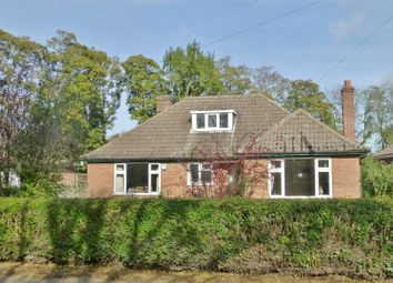 Thumbnail 3 bed bungalow for sale in Cold Overton Road, Langham, Oakham