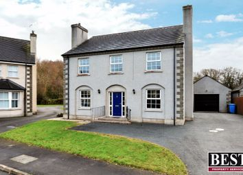 Thumbnail 4 bedroom detached house for sale in The Meadows, Moy, Dungannon