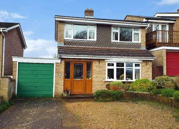 Thumbnail 3 bed detached house for sale in Orchard Close, Wollaston, Northamptonshire