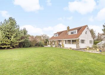 Thumbnail 5 bed detached house for sale in The Paddock, Melmerby, North Yorkshire