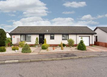 Thumbnail 3 bed detached bungalow for sale in 11 Netherton Place, Westmuir, Kirriemuir