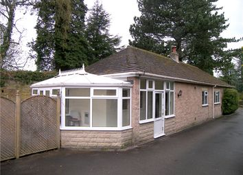 Thumbnail 2 bed bungalow to rent in The Haven, Mill Lane, Holloway