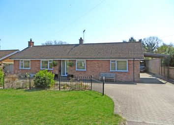 3 bed detached bungalow for sale in Blackheath, Wenhaston, Halesworth IP19