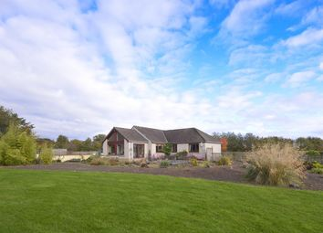 Thumbnail 3 bed bungalow for sale in Mill Valley, Edrom, Duns