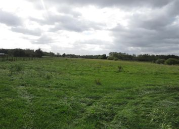 Thumbnail Land for sale in Middle Drove, Ramsey Heights, Huntingdon
