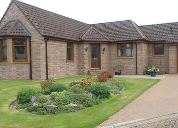 Thumbnail 3 bed detached bungalow to rent in Grovita Gardens, Forres
