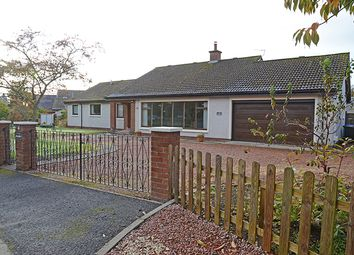 Thumbnail 3 bedroom bungalow for sale in Little Blair Drive, Rosemount, Blairgowrie 6Jl