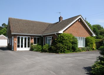 Thumbnail 4 bed detached house for sale in Main Road, Hundleby, Spilsby