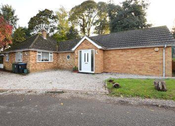 Thumbnail 4 bed detached bungalow to rent in London Road, Shendish, Hemel Hempstead, Hertfordshire