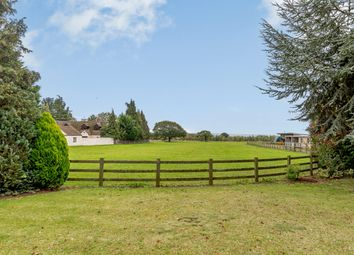 Springhill, Longworth, Abingdon OX13. 3 bed detached bungalow for sale