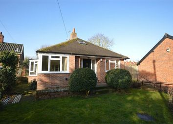Thumbnail 4 bed detached bungalow for sale in The Street, Saxlingham Nethergate, Norwich