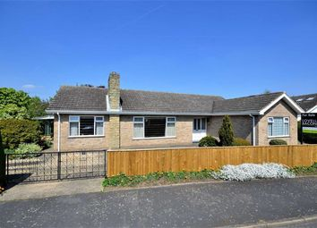 Thumbnail 3 bed bungalow for sale in Smithfield, North Thoresby, Grimsby