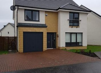 Thumbnail 4 bedroom detached house to rent in Cypress Road, Carfin, Motherwell