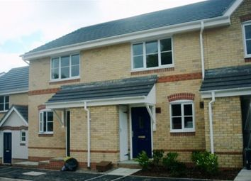 Thumbnail 2 bedroom terraced house to rent in Oceana Crescent, Beggarwood, Basingstoke