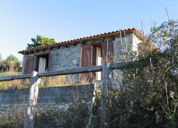 Thumbnail Country house for sale in Sarzana, La Spezia, Italy