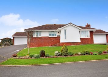 Thumbnail 3 bed detached bungalow for sale in Blenheim Close, Torquay