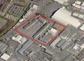 Thumbnail Warehouse to let in Balmoral Fruit Market, Balmoral Link, Belfast, County Antrim
