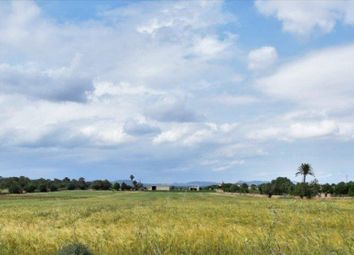 Thumbnail 4 bed country house for sale in Campos, Mallorca, Spain
