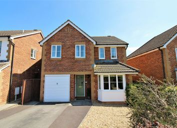 Thumbnail 4 bed detached house for sale in Redstart Road, Chard