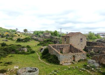 Thumbnail Farm for sale in Castelo Branco, Castelo Branco (City), Castelo Branco, Central Portugal