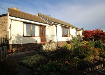 Thumbnail 2 bed semi-detached bungalow for sale in Tenter Hill, Wooler, Northumberland