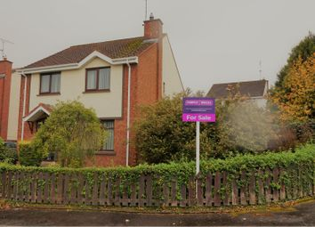 Thumbnail 4 bed detached house for sale in Grangemore Park, Derry / Londonderry