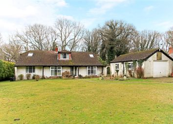 Thumbnail 5 bed detached bungalow for sale in Lower Densome Wood, Woodgreen, Fordingbridge, Hampshire