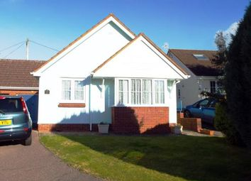 Thumbnail 2 bed bungalow for sale in Payhembury, Honiton, Devon
